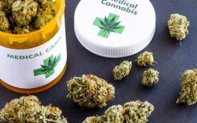Le cannabis thérapeutique, pour quelles maladies ?