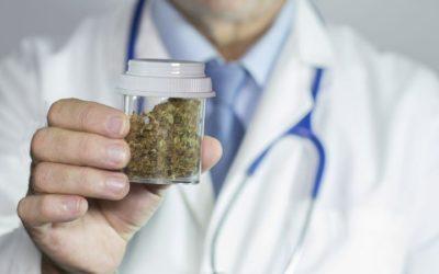 Conseils pour intégrer le marché européen du cannabis médical