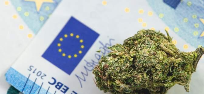 Ce qu'il faut savoir sur le business du cannabis légal en France